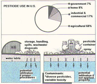 illustration of potential pathways Commercial Use of Pesticides can contaminate groundwater